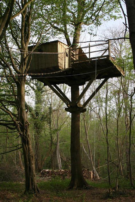 chambre hote dans les arbres photos de cabanes dans les arbres