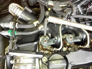 Joint Injecteur 1 4 Hdi : injecteur c4 picasso injecteur peugeot citroen 1 6 hdi ~ Melissatoandfro.com Idées de Décoration