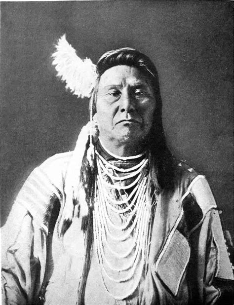 native voices  indigenous peoples history