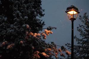 winter-capricorn