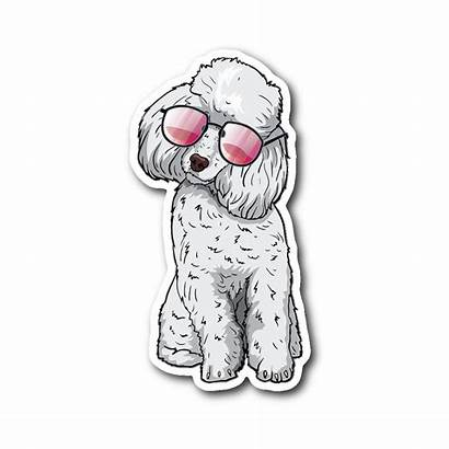 Dog Sticker Poodle Dogs Lovers Aesthetic Stickers