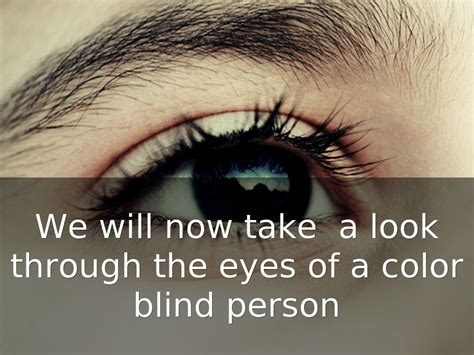 Color Blindness By Sam Taylor