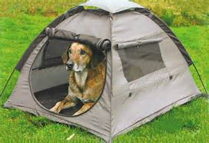 Image result for Good Camping Dogs