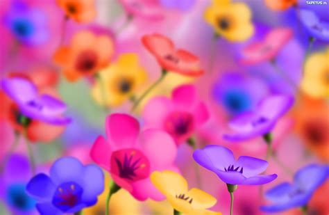 stiker warna warni kwiaty najlepsze znaleziska i wpisy archiwum z
