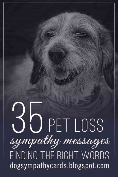 words of comfort for loss of pet visit http jagifts us petlosssympathymessages pet