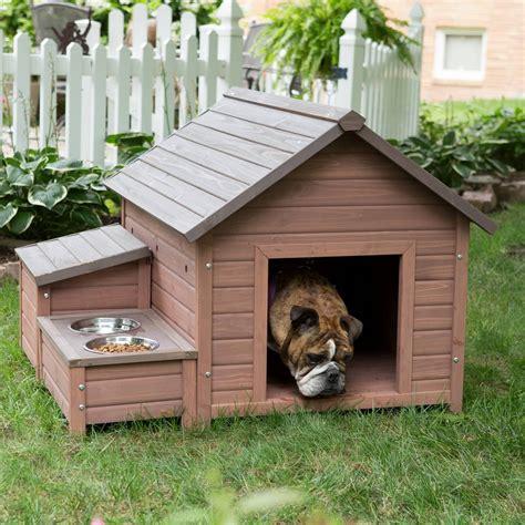 diy dog house beginner ideas house plans