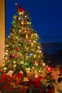 traditional christmas tree photo information