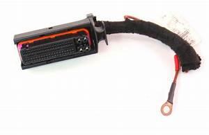 Ecu Ecm Engine Computer Wiring Pigtail Plug 02 Vw Beetle