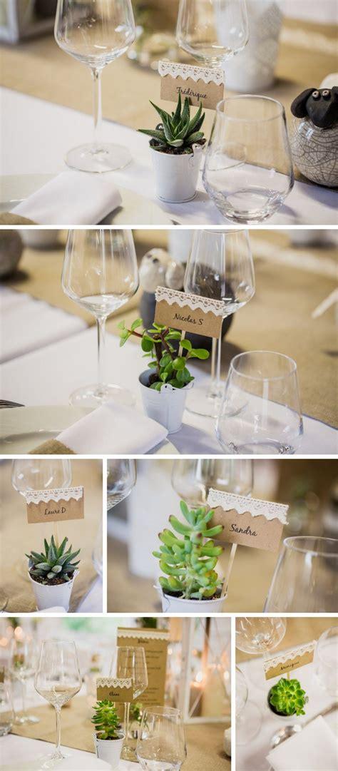 plantes grasses cadeaux aux invites succulentes deco