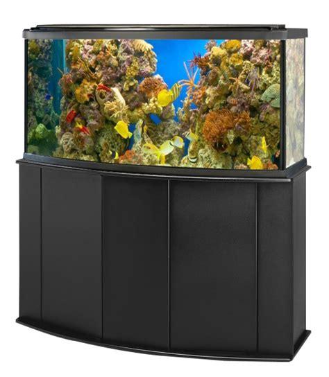aquarium png
