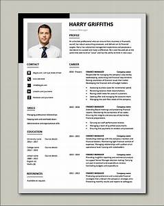 Ms Access Resume Finance Manager Resume Cv Example Sample Templates