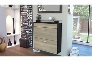 Meuble Chaussure Suspendu : meuble rangement chaussures suspendu pour meuble entr e ~ Dallasstarsshop.com Idées de Décoration