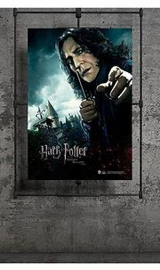 Wizarding World Harry Potter Poster Deathly Hallows P.1 ...