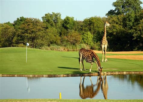 hans merensky hotel spa phalaborwa south africa