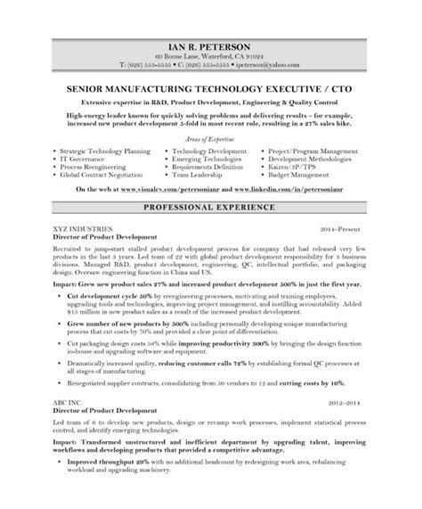 Cto Resume by Chief Technology Officer Free Resume Sles Blue Sky