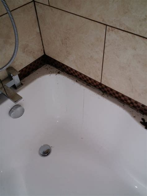 re seal re grout re tile around bath diynot forums