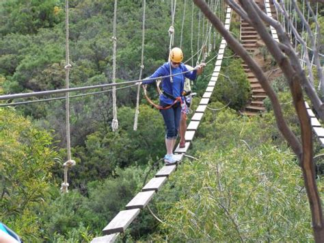 las canadas canopy tour tricky bridge picture of las canadas canopy tour