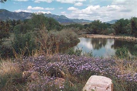 Best Kidfriendly Hikes In Colorado Springs Area. Discover Card No Annual Fee Html Email Link. Boost Immune System Food Big Box Self Storage. Banner Baywood Hospital Hotel Santa Fe Mexico. Viveiros Insurance Fall River. Online Programs For Nursing Metro E Network. Home Insurance Portland Recycled Metal Roofing. Online Principal Licensure Programs. Merchant Bankcard Services Repair Sewer Pipe