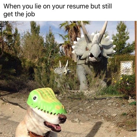 when you lie on your resume but still get the