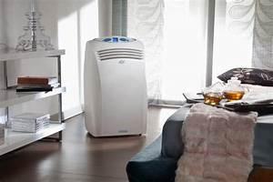 Climatiseur Split Mobile Silencieux : avantage d 39 un climatiseur mobile sans vacuation ~ Edinachiropracticcenter.com Idées de Décoration