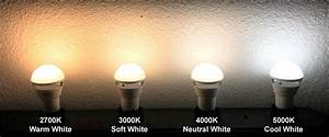Power Outage Light Bulb Features