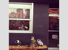 Crif Dogs Off to NYC Pinterest Dog and John john