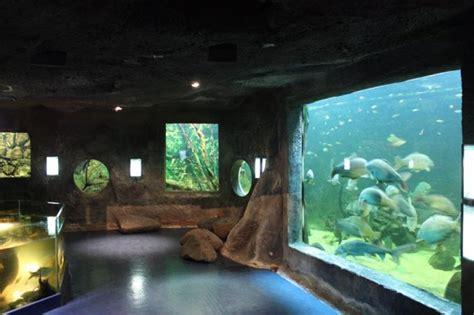 le grand aquarium de aquarium poissons eau douce moncoutant poitou charentes pescalis