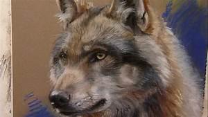 wolf in pastel by marjolein kruijt