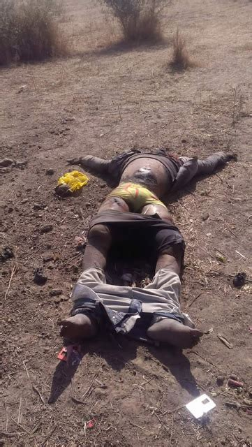 18 11 Dead Bodies Killed By Fulani Herdsmen Recovered