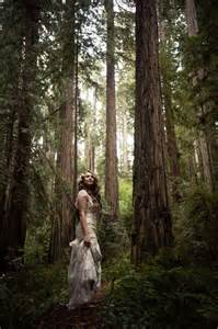 forest wedding cecilia and craig 39 s california redwood forest wedding
