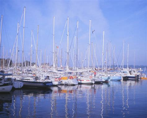 Yacht Harbour by Yacht Harbour With Water Reflections Vincent Stahl Photo