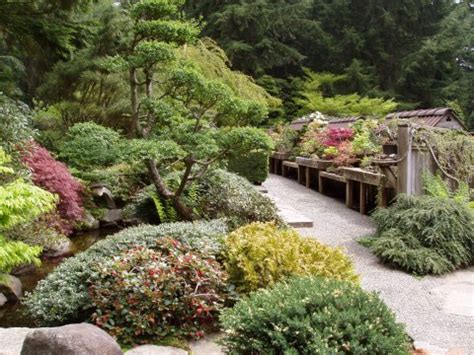 pacific northwest landscaping ideas top 28 landscape designs northwest pdf a backyard in the pacific northwest grow pinterest