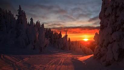 Sunset Forest Winter Landscape Snowy 4k Uhd