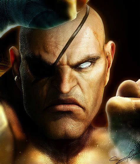 Realistic Street Fighter And 'dragon Ball Art Shows Its Pores