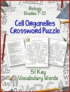 Cell Organelles Crossword Puzzle 51 Key Vocabulary Words ...
