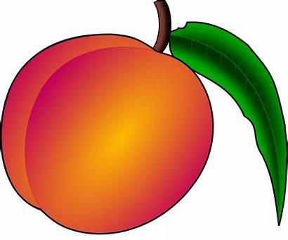 Peachy Peach Clip