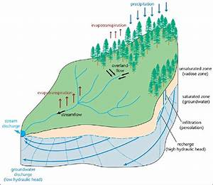 Components Of The Hydrologic Cycle Within A Watershed  Groundwater Flow