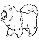Poodle Coloring Chow Drawing Pages Printable Clipart Head Toy Template Clipartmag Drawn Library sketch template