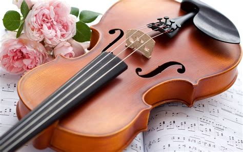 violin wallpapers   gallery hot hd