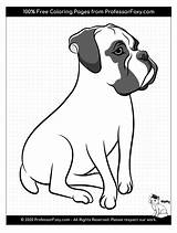 Coloring Boxer Dog Dogs Breeds Breed Animal Soon Being Favorite Added sketch template