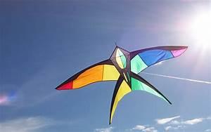 kite hd wallpaper