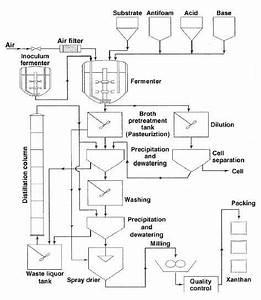3 Process Flow Diagram Of Xanthan Gum  Source   Author U0026 39 S