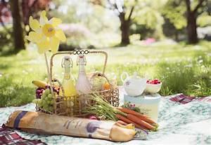 Romantisches Picknick Ideen : romantisches picknick 20 ideen f r heiratsantrag ~ Watch28wear.com Haus und Dekorationen