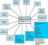 Diseases of immune sys...