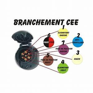Cablage Attache Remorque : fil remorque 7 brins capteur photo lectrique ~ Medecine-chirurgie-esthetiques.com Avis de Voitures