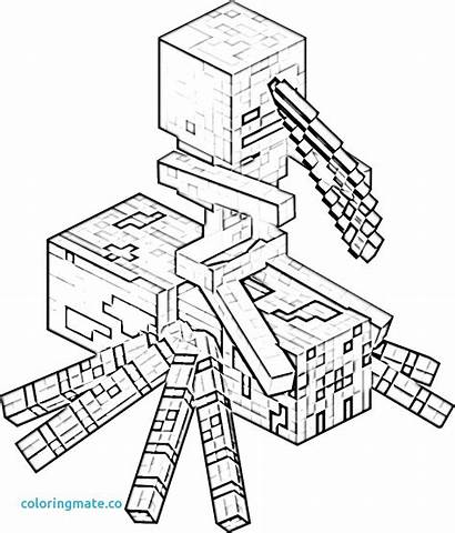 Minecraft Skeleton Drawing Coloring Pages Story Mode