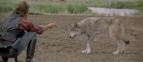 dances  wolves academy award  picture winners