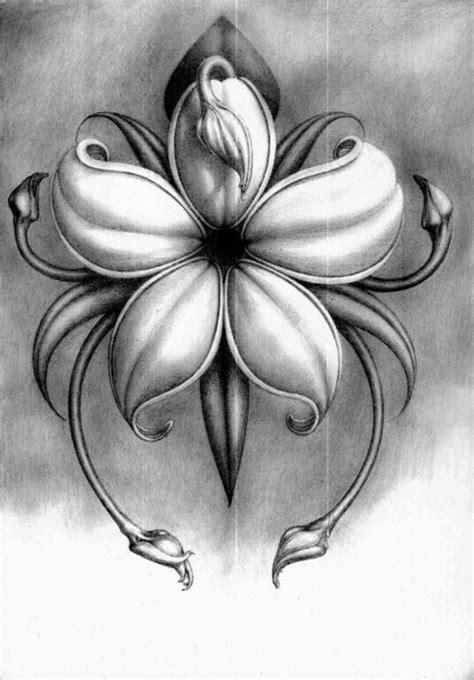 Pin by Lisa Vaughn on BLACK | Pencil drawings of flowers, Flower drawing, Pencil drawings