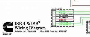 Wiring Diagram Cummins Isb4  U0026 Isbe Cm800  For Ecm 4898112