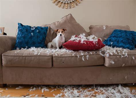 mattresssofawarehousecom  mattress sofa warehouse